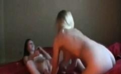 Hot Babes Amateur Strapon Lesbians