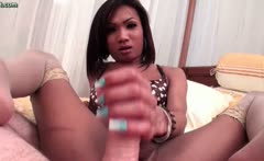Horny shemale babe doing handjob
