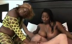 Thick Black Sluts Sucking On A Cock