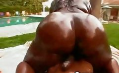 Giant Afro Black Hoe Wet Outdoor Riding